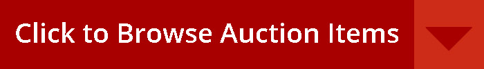 auctionsni auction northern ireland btn
